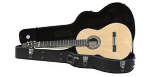 guitar in an open black case